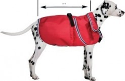 BLIZZARD DOG COATS NOW IN STOCK