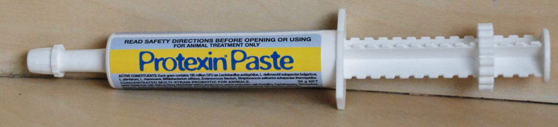 PROTEXIN PASTE 30G