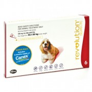 REVOLUTION DOG RED 10.1 - 20KG