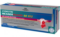 WEANERGUARD + B12 AND SEL 500ml