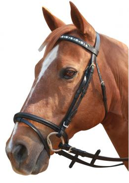 SHOWCRAFT LINKING HORSE BRIDLE