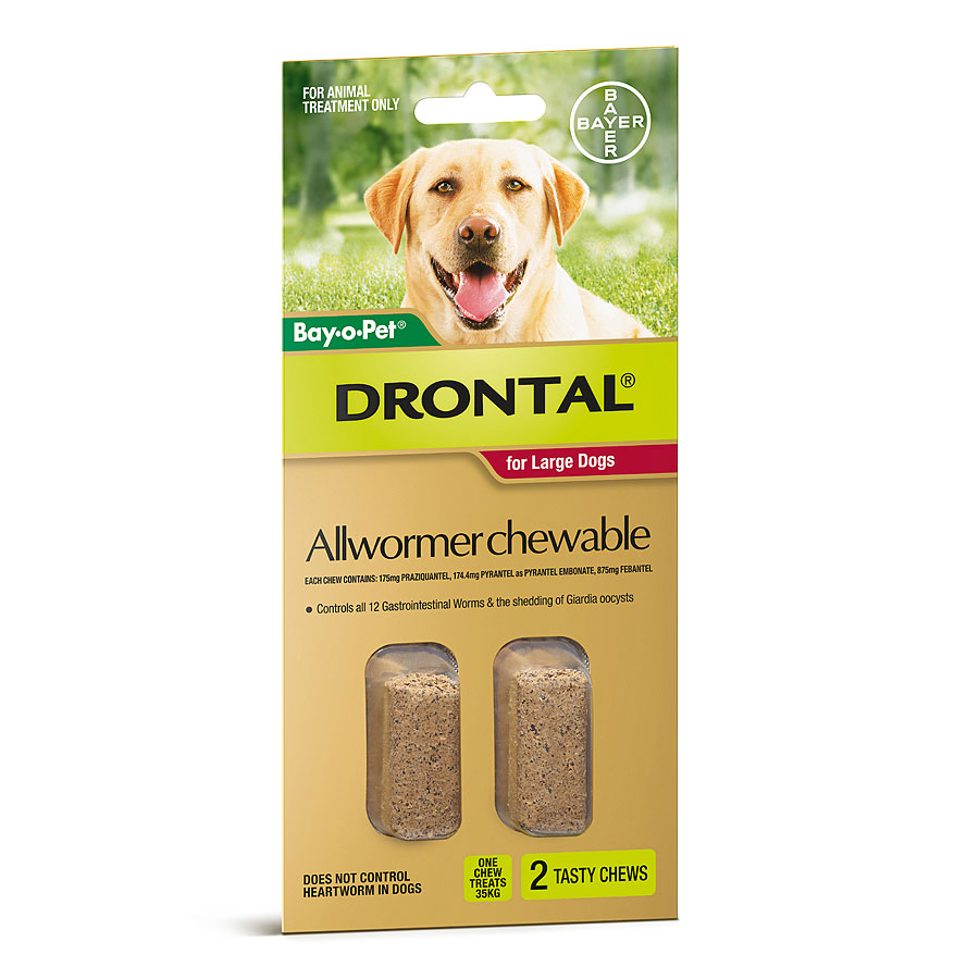 BAYER DRONTAL CHEWS LARGE DOG 2PK