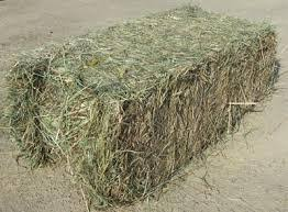 Grass Hay & Chaff Products